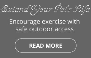 Extend Your Pet's Life | Encourage exercise with safe outdoor access |Read more
